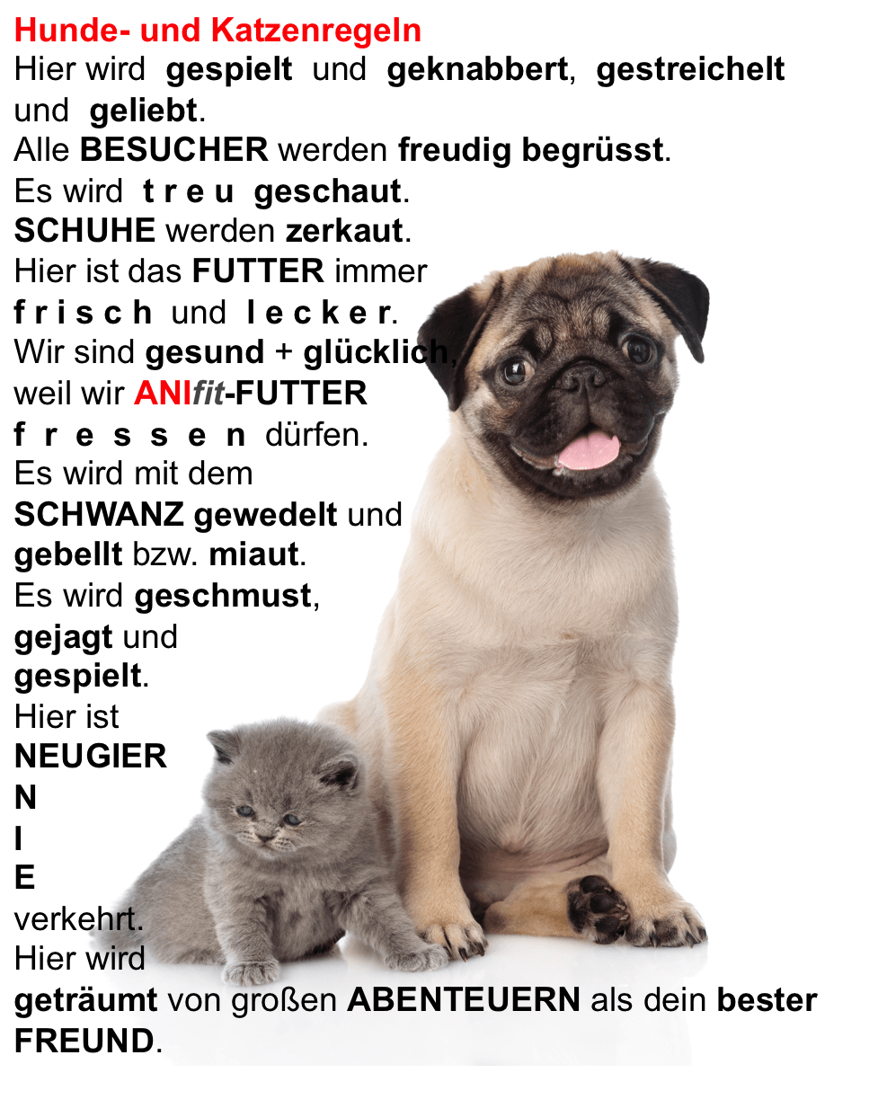 101 Hundesprüche