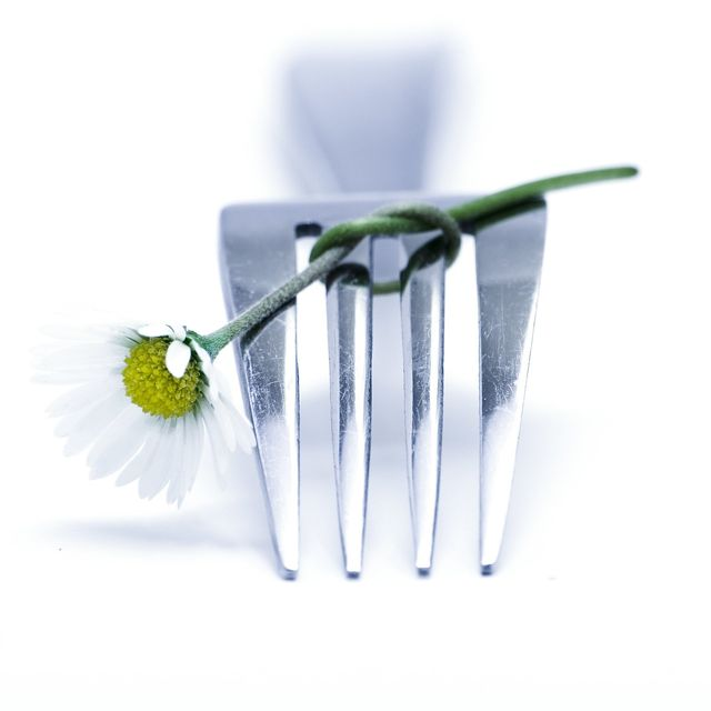 Catering by Mohr - Partyservice und Catering