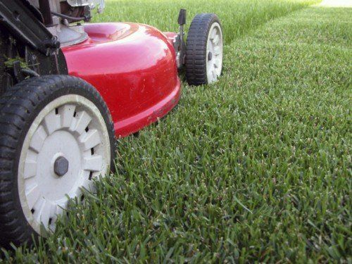 Mower on lawn