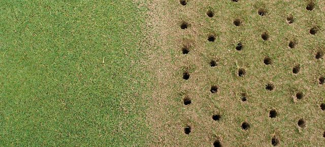 aeration holes in grass