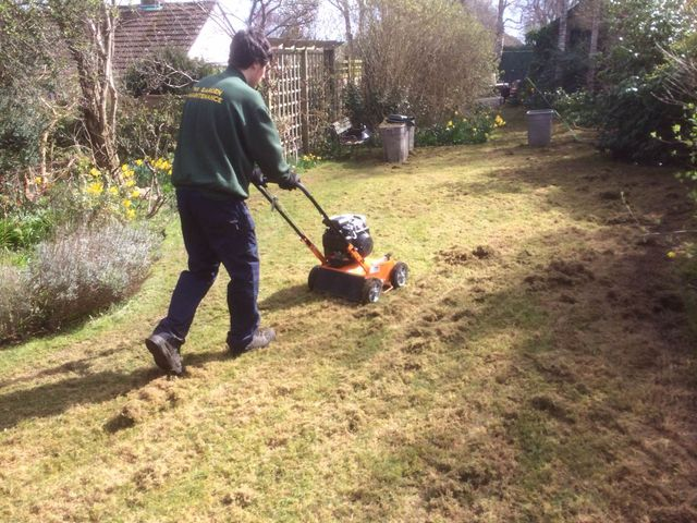 Lawn being scarified