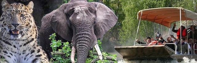 serengeti park übernachten