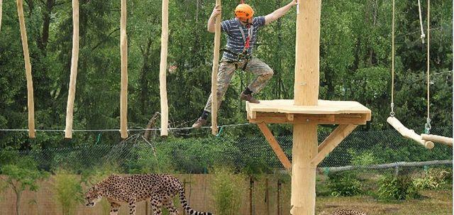 safaripark stukenbrock preise