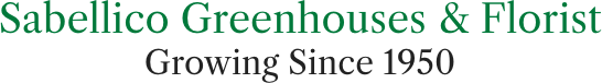 Sabellico-Greenhouses-&-Florist-logo