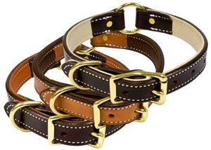 17 London Tan Premium Leather Standard Collar