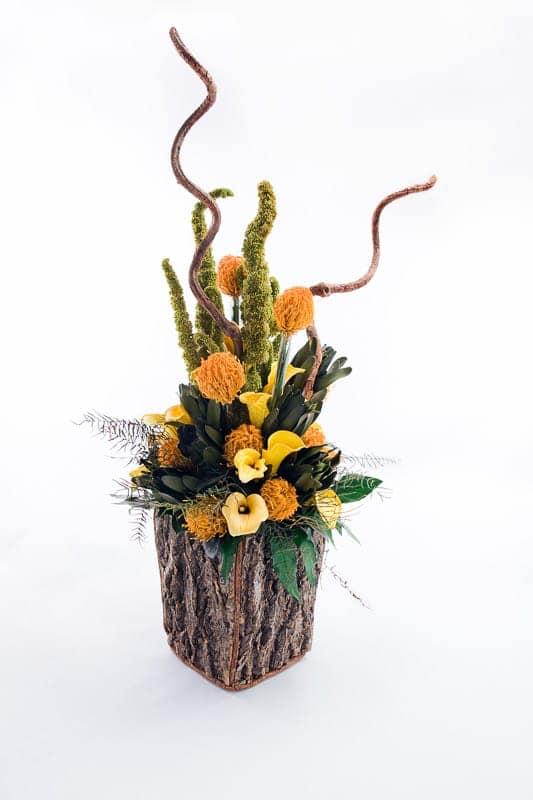 Beliebt Bevorzugt Blumen-Welt @EV_01