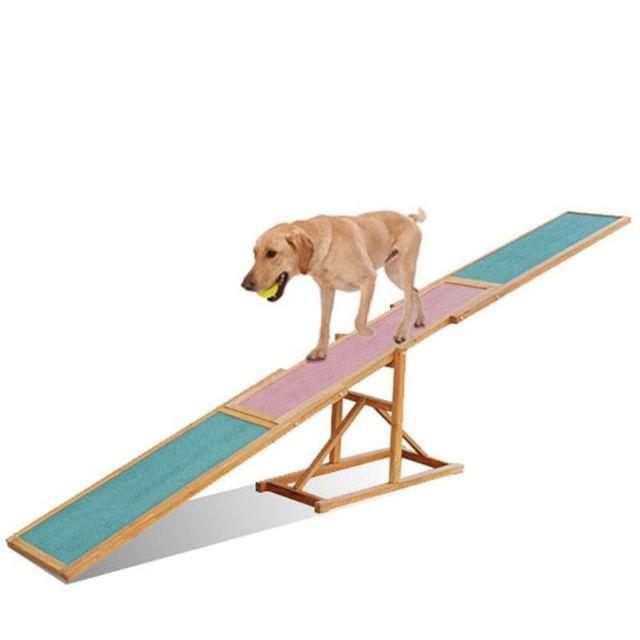 dog on agility seesaw