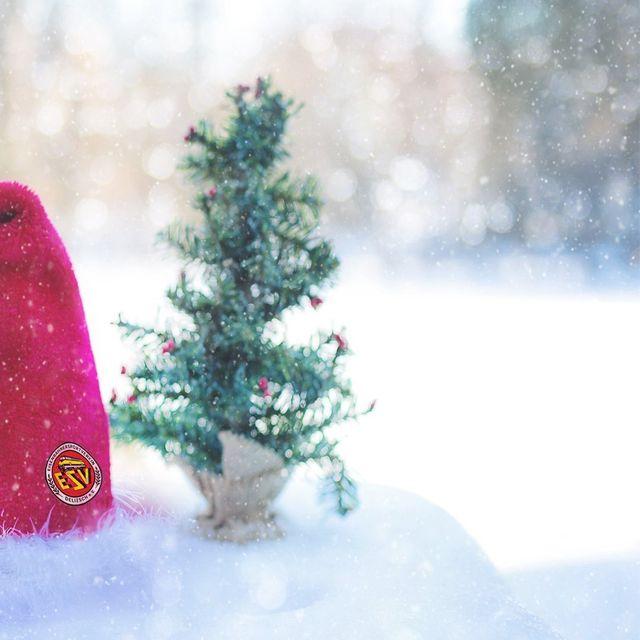 Frohe Weihnachten Wann Wünscht Man.Der Esv Delitzsch E V Wünscht Frohe Weihnachten
