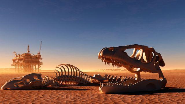 Die Welt Der Dinosaurier Home