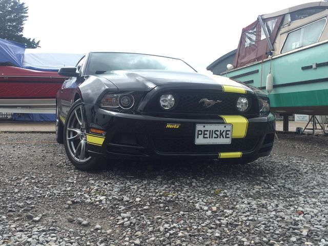 surrey mustang owners club